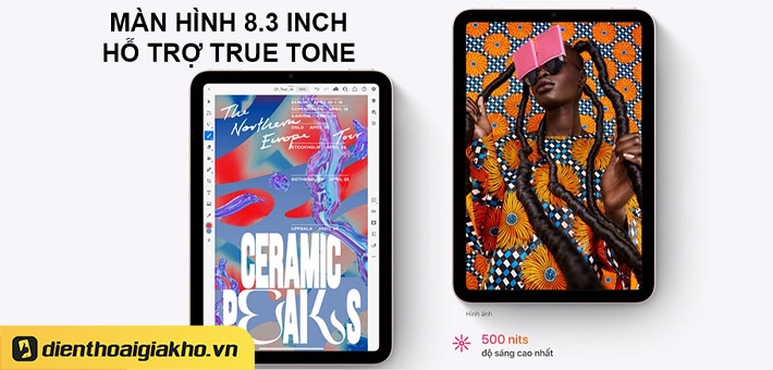 màn hình true tone trên iPad Mini 6 8.3 inch Wifi 256GB 2021